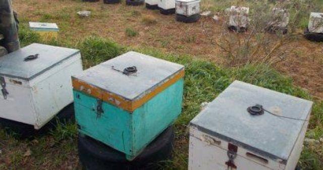 59χρονος έκλεβε κυψέλες μελισσών στην Λάρισα