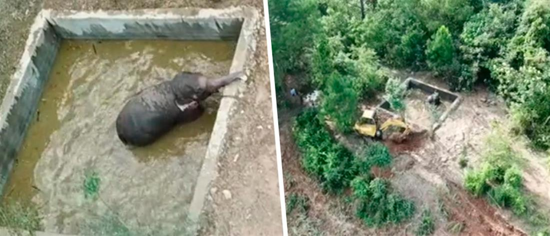 Διάσωση ελέφαντα από δεξαμενή