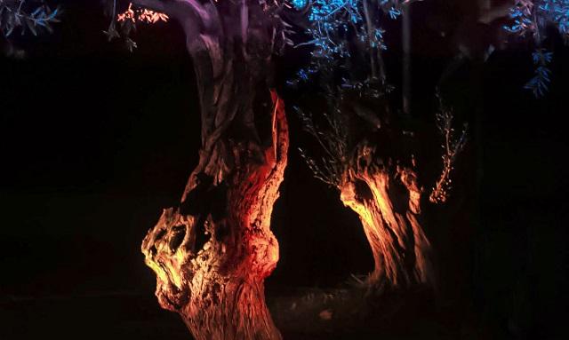 Η τέχνη του νυχτερινού τοπίου