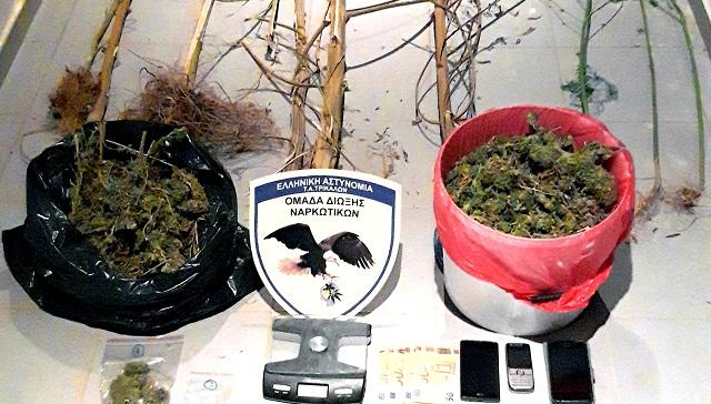 Νέες συλλήψεις για καλλιέργεια και διακίνηση ναρκωτικών στα Τρίκαλα