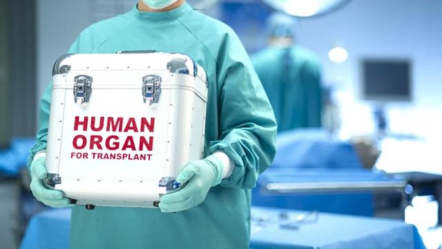 60 νεφροπαθείς στη Μαγνησία περιμένουν το «δώρο ζωής»