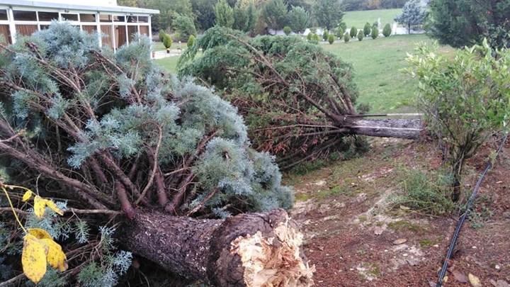 Καταιγίδες, ισχυροί άνεμοι και ανεμοστρόβιλοι έπληξαν την Ήπειρο