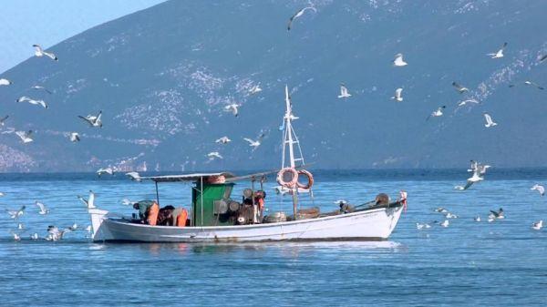 Δημοπρασία για κατασχεμένα αλιευτικά εργαλεία