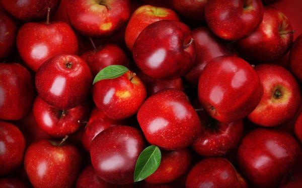 Αύξηση ανάσα τιμών χοντρικής διάθεσης των μήλων στο Πήλιο