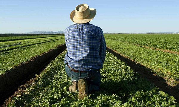 Αγρότης βρήκε θαμμένο ανθρώπινο σκελετό στο χωράφι του