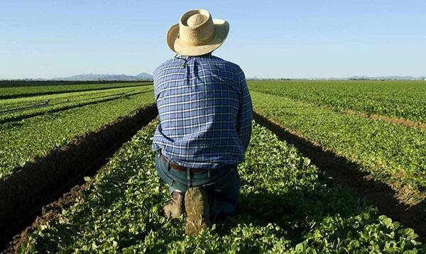 Αγρότης βρήκε θαμμένο ανθρώπινο σκελετό σε χωράφι του