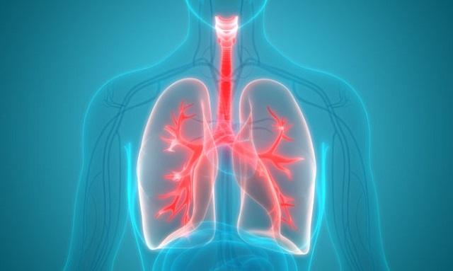 Κάπνισμα: Με ποιες τροφές επιδιορθώνεται η πνευμονική λειτουργία πρώην καπνιστών