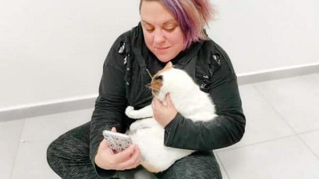 Αίσιο τέλος για την τυφλή γατούλα που κακοποιήθηκε στη Φολέγανδρο