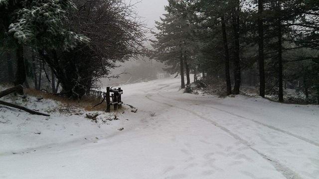 Ερχεται το πρώτο χιόνι στο Πήλιο