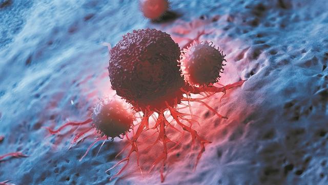 Κυτταρικό όπλο κατά του καρκίνου