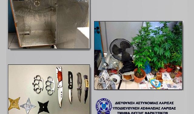Πλήρως εξοπλισμένο εργαστήριο υδροπονικής καλλιέργειας κάνναβης σε σπίτι στη Λάρισα