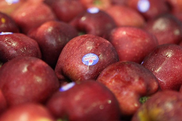 Ζαγορίν: Τα μήλα ενισχύουν το ανοσοποιητικό μας