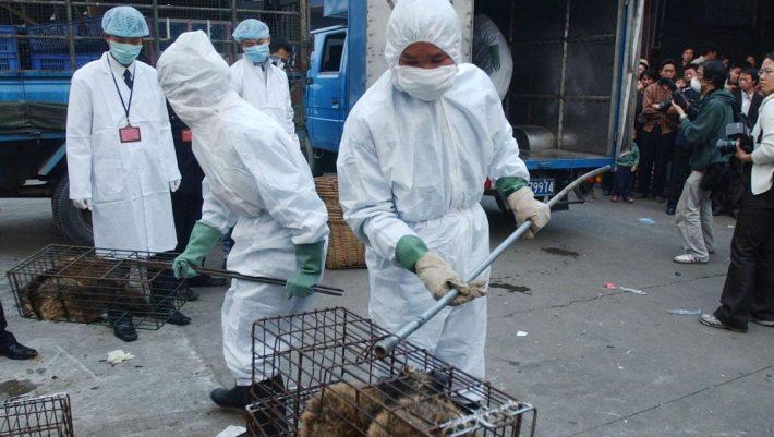 Αδιόρθωτοι: Η εικόνα στις αγορές της Κίνας 4 μήνες μετά τη «γέννηση» του κορωνοϊού