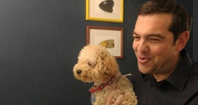 Ανεβάζει φωτό στο Facebook με τον σκύλο του Κάρμεν