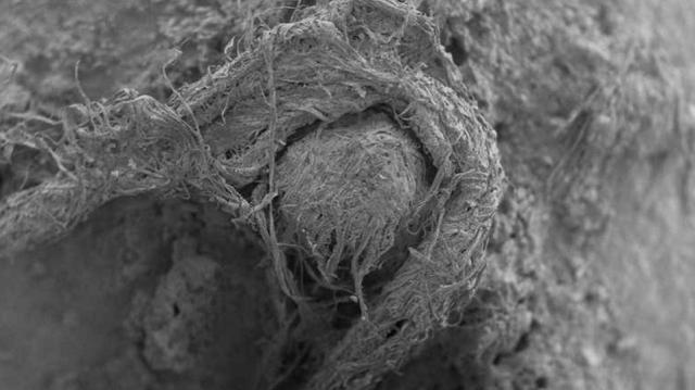 Ανακαλύφθηκε μικροσκοπικό κομμάτι σχοινιού που το είχαν φτιάξει...Νεάντερταλ!