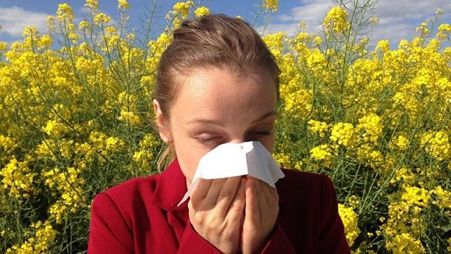 Τσιόδρας: Πως να ξεχωρίσετε την αλλεργία από τον κορονοϊό