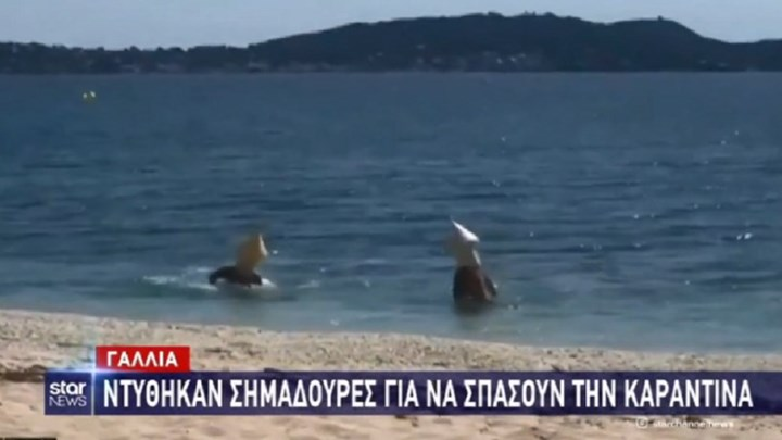 Ντύθηκαν σημαδούρες για να μπουν στη θάλασσα