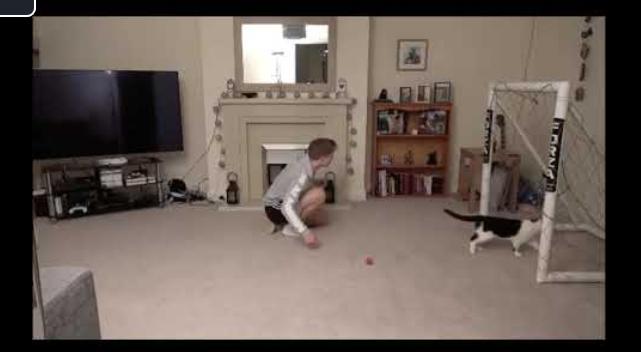Viral η γάτα-τερματοφύλακας: Aπέδειξε ότι έχει μεγάλο ταλέντο [βίντεο]