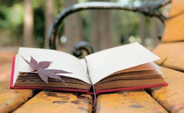 Συναρπαστική λογοτεχνική συντροφιά