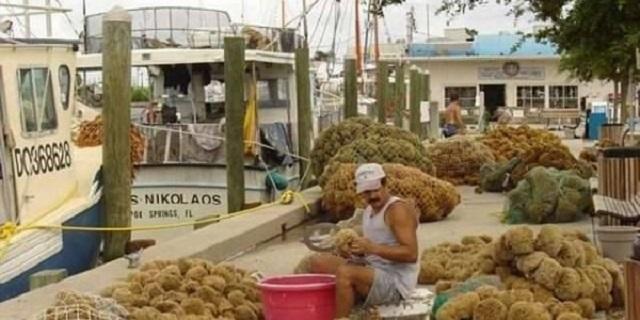 Το χωριό της Φλόριντα με τους χιλιάδες Έλληνες που θυμίζει Δωδεκάνησα