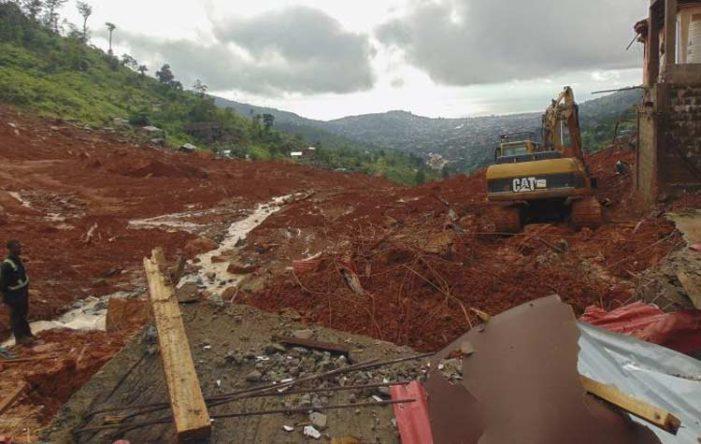 Ινδία: 43 νεκροί από κατολίσθηση σε φυτεία τσαγιού - Φόβοι για παγιδευμένους