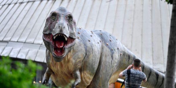 Βρετανία: Εντοπίστηκαν οστά ενός νέου δεινόσαυρου, «εξάδερφου» του Τυραννόσαυρου