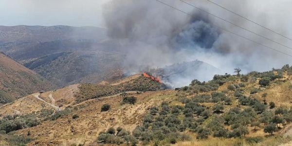 Κρήτη: Ολονύχτια μάχη με τη φωτιά - Εκκενώθηκαν οικισμοί