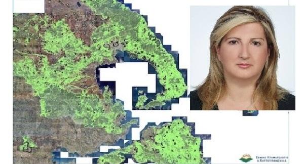 Μέχρι 14/9 οι αιτήσεις για την αναμόρφωση του δασικού χάρτη στη Μαγνησία