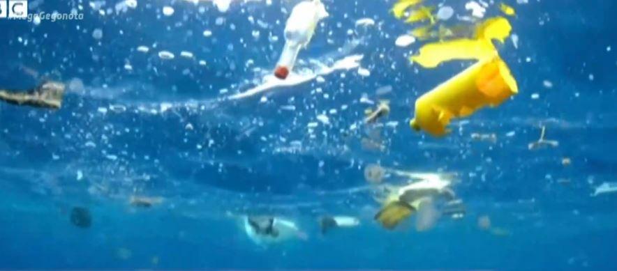 Σε υδάτινη χωματερή έχει μετατραπεί ο Ατλαντικός Ωκεανός – Θλιβερές εικόνες