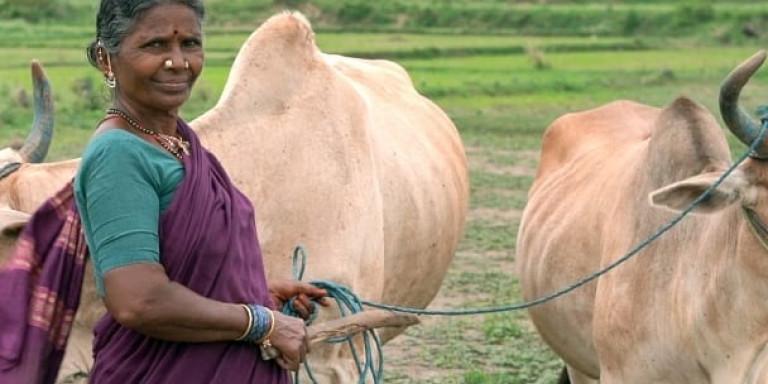 Πώς μια αγρότισσα γιαγιά, έγινε αστέρι του YouTube στην Ινδία [βίντεο]