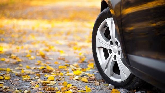 Γιατί το Φθινόπωρο είναι η πιο δύσκολη εποχή για τους οδηγούς -Τι να προσέχουν
