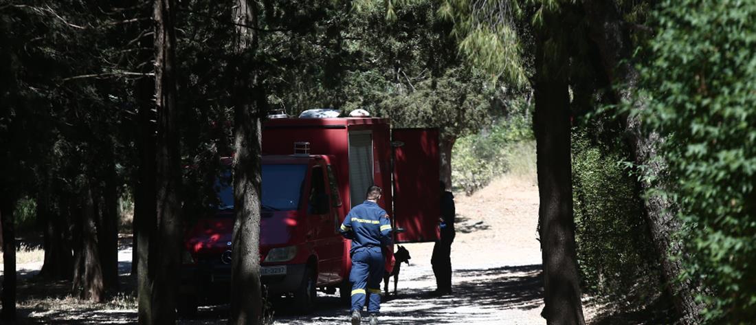 Αίσια κατάληξη στην εξαφάνιση 11χρονης στον Αλμυρό