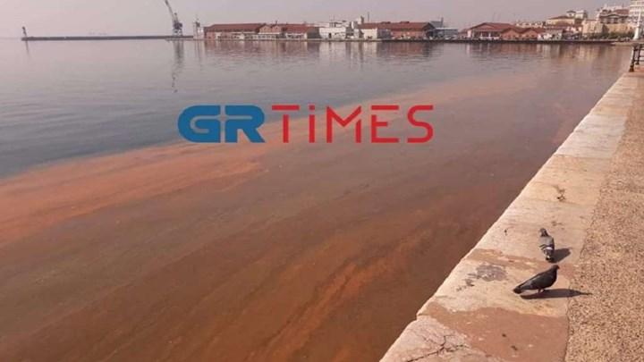 """Θεσσαλονίκη: Γιατί ο Θερμαϊκός βάφτηκε """"κόκκινος"""""""