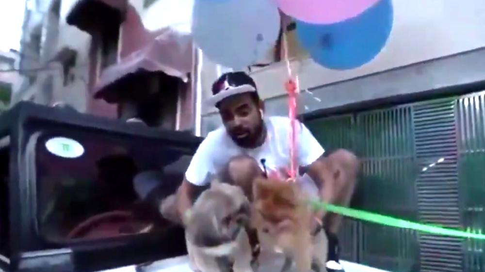 Συνελήφθη YouTuber, που έδεσε μπαλόνια στον σκύλο του για να… πετάξει