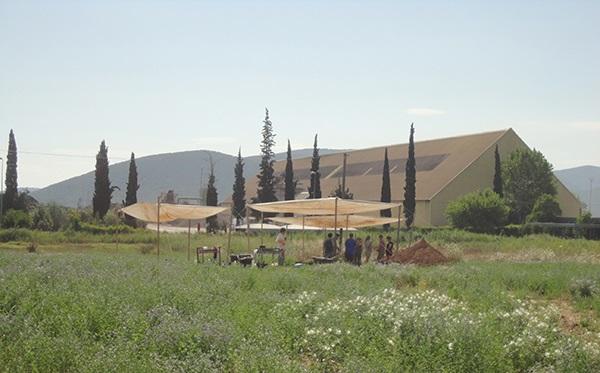 Επανεκκινούν οι ανασκαφές στη Μαγούλα Πλανανιώτικη στον Αλμυρό