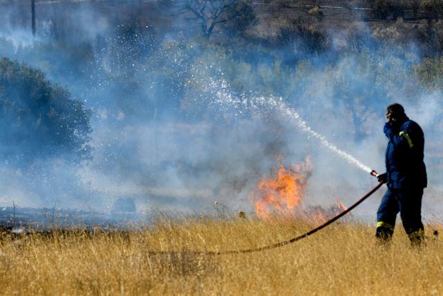 Φωτιά στα Τέμπη: Ισχυρές δυνάμεις της Πυροσβεστικής στο σημείο