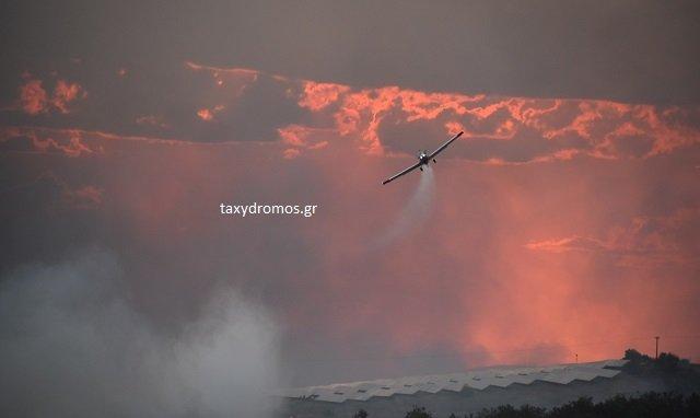 Δυνάμεις από τη Μαγνησία στη μεγάλη φωτιά στα όρια με το Ν. Λάρισας
