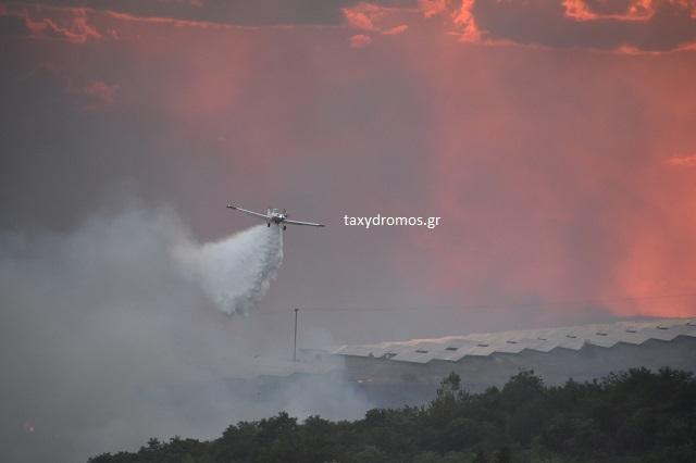 Μαίνεται η φωτιά στα όρια Λάρισας - Μαγνησίας