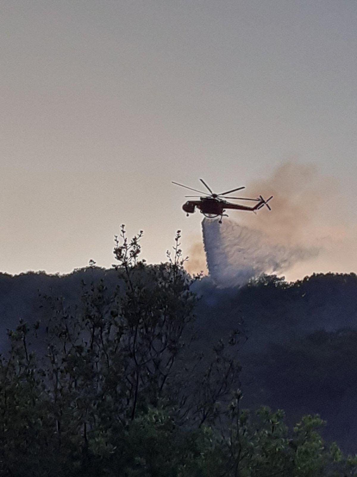 Στάχτη έγιναν πάνω από 300  στρέμματα δάσους στη Βρύναινα