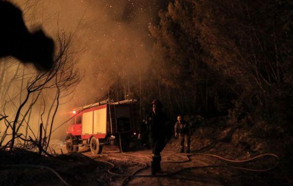 Φωτιά στη Φθιώτιδα: Μάχη με τις αναζωπυρώσεις δίνουν οι πυροσβέστες