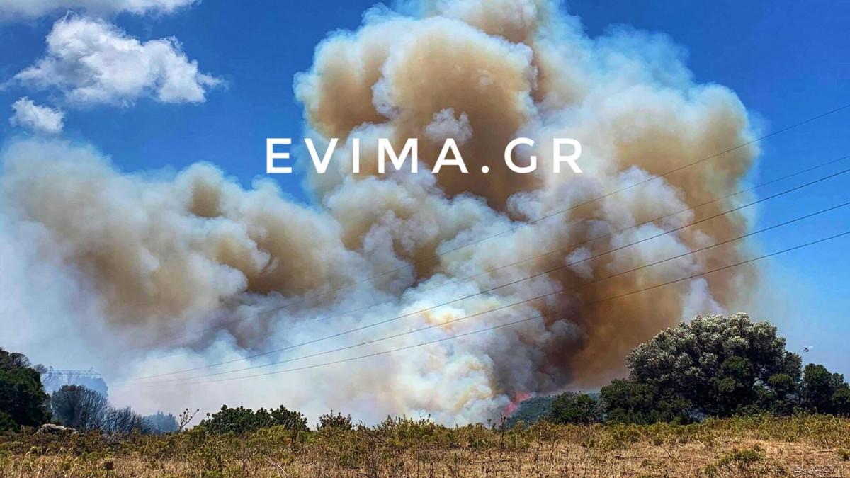 Φωτιά στην Εύβοια: Σε κατάσταση έκτακτης ανάγκης ο δήμος Ελυμνίων