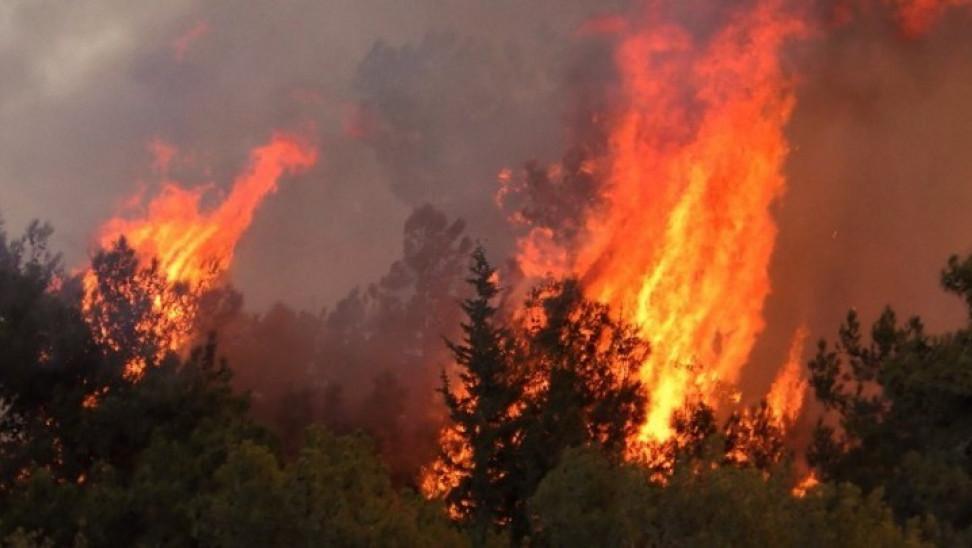 Μήνυμα 112 στους Βολιώτες για πολύ υψηλό κίνδυνο πυρκαγιάς