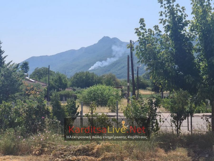 Πυρκαγιά σε δύσβατο σημείο στο δάσος του Μαυρομματίου