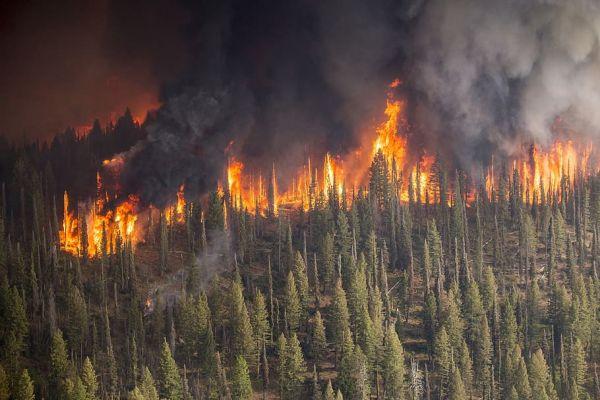 Κλιματική αλλαγή: Από την Αρκτική μέχρι την Ανταρκτική, το 2020 ήταν χρονιά φωτιάς και λάβρας