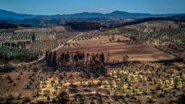 Φωτιές: Απαλλάσσονται από τον ΕΝΦΙΑ και τα αγροτεμάχια που καταστράφηκαν από τις πυρκαγιές