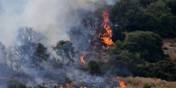 Πάνω από 33.000 θάνατοι ετησίως συνδεόνται με τη ρύπανση του αέρα από τις δασικές πυρκαγιές