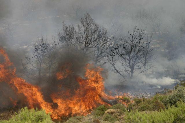 Φωτιά τώρα στους πρόποδες της Πάρνηθας