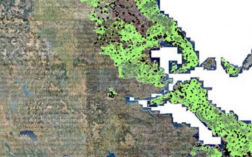 Δικαιωμένοι γεωπόνοι, μηχανικοί - Απόφαση ΣτΕ για δασικούς χάρτες