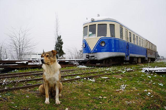 Γερμανοί τεχνίτες του σιδηροδρόμου στο Βελεστίνο