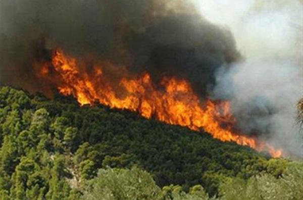 Εκδηλώθηκαν 37 πυρκαγιές σε 12 ώρες